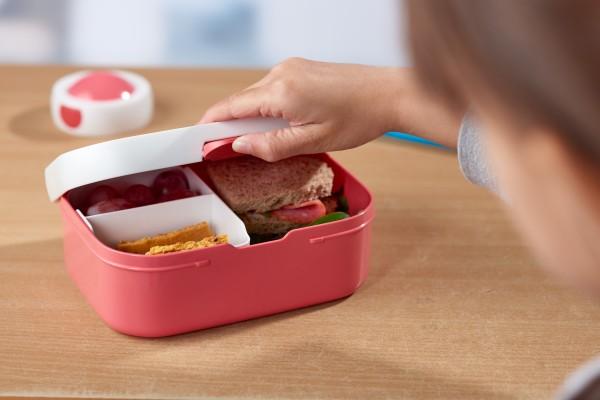 Lunchbox-Roos_cvBRrKB8RM119q